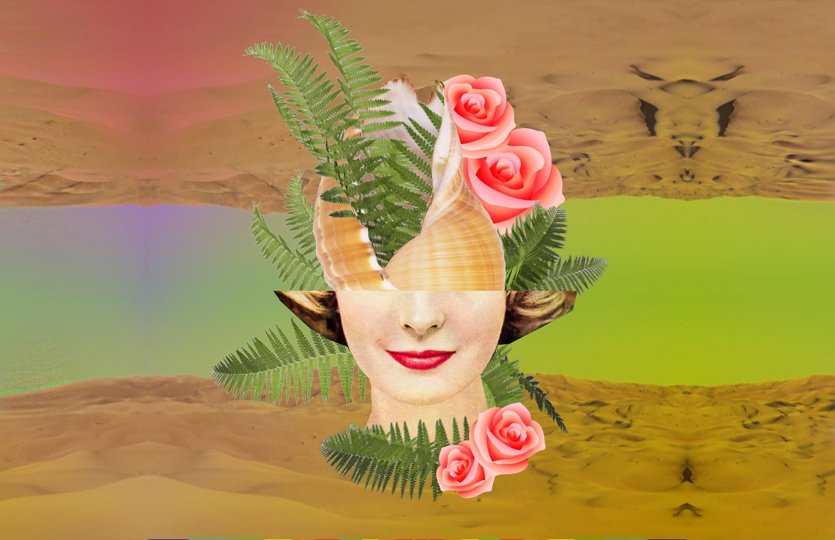 shellface_poster